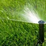 irrigation_right_side_image
